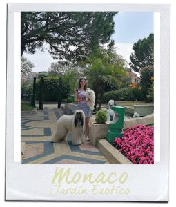 postcard-monacoexotic