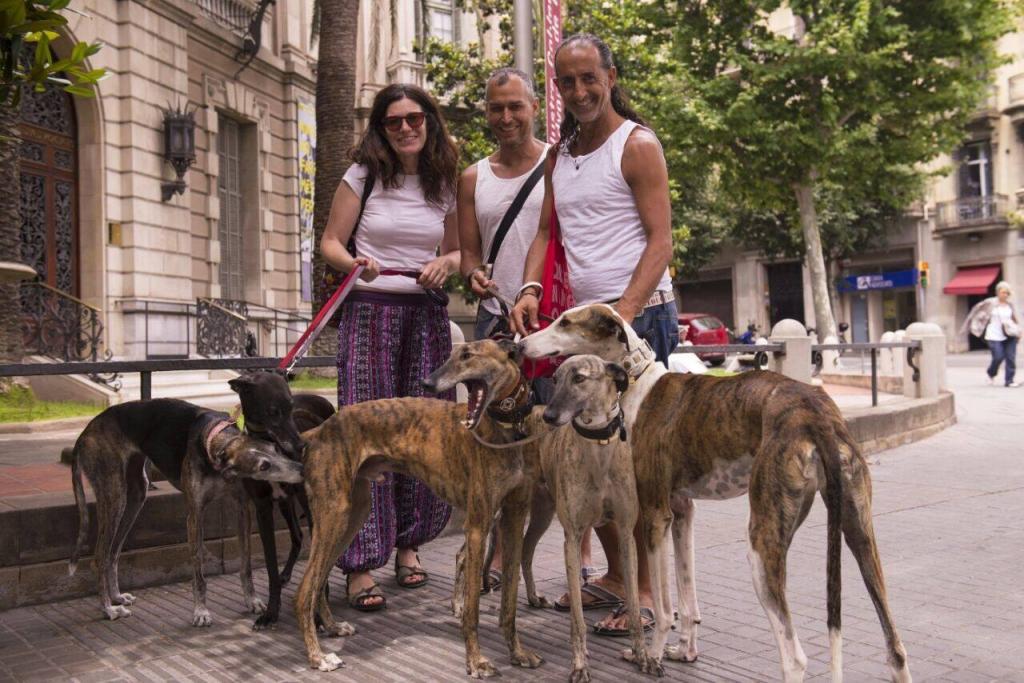 FOTOGRAFÍA DE SOS GALGOS EN LA MARCHA DE BARCELONA 2015