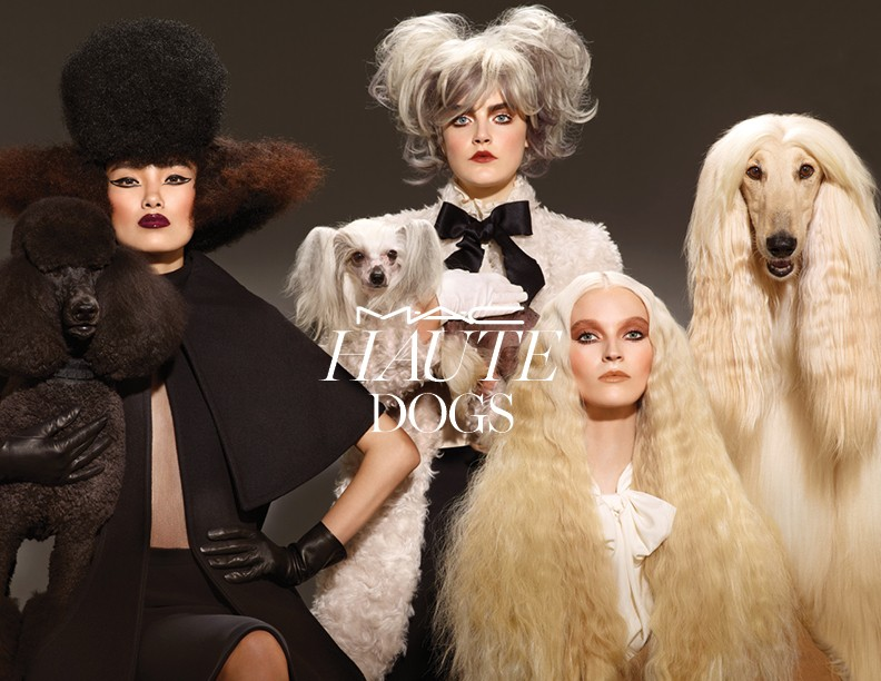 afghan-hound-mac-cosmetics-haute-dogs