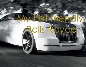 rolls-royce-perros-2