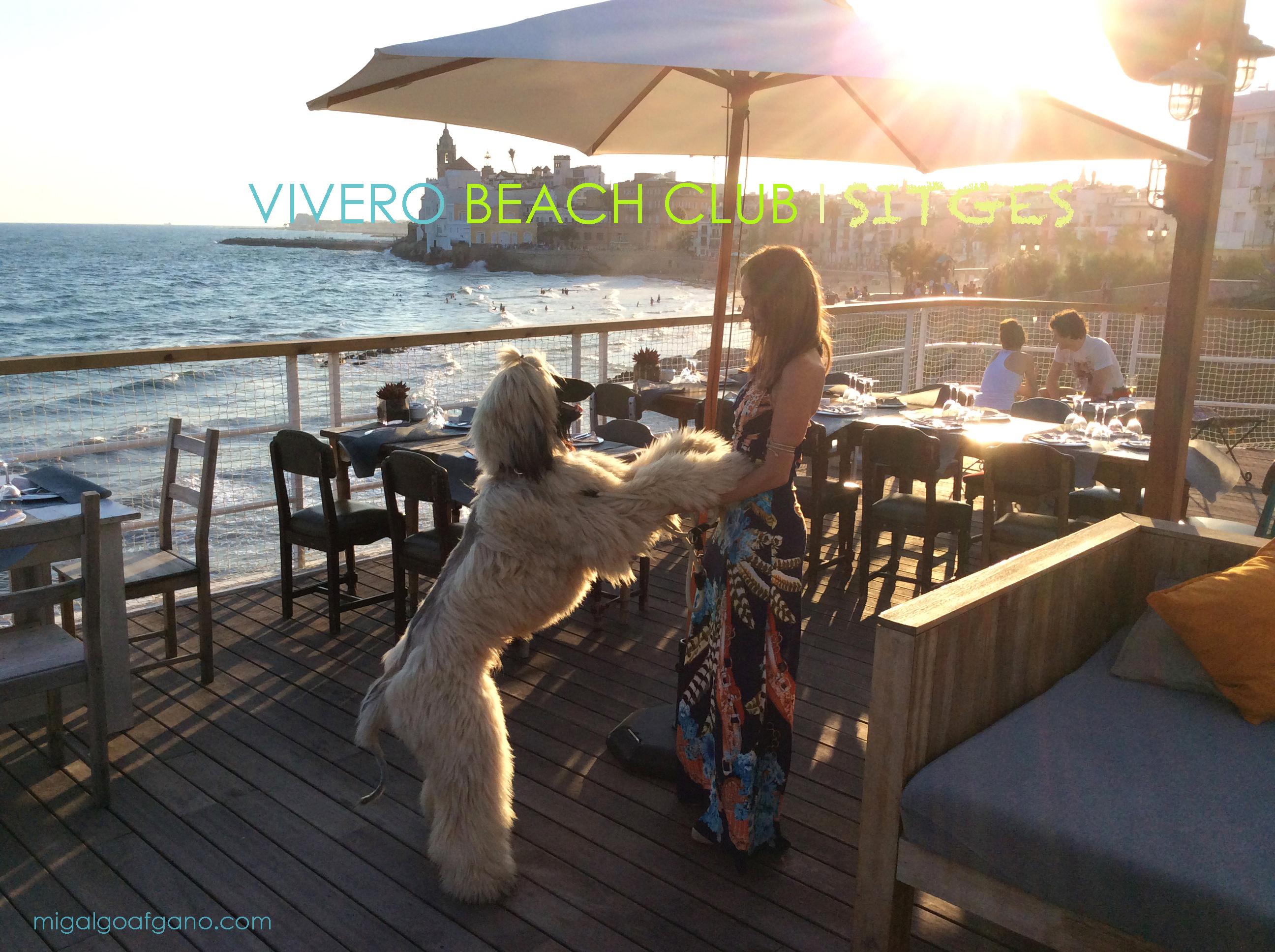 vivero_beach_club_restaurant_sitges