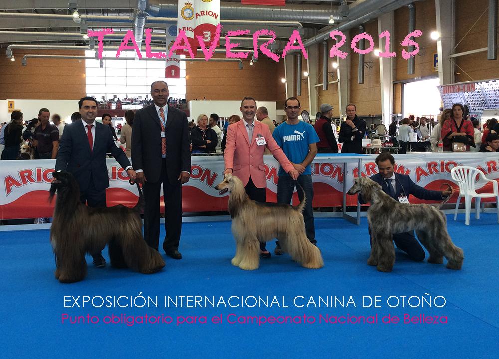 talavera-2015