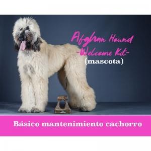 http://dogsandthecityshop.com/es/kit-especial-galgo-afgano/323-kit-cepillado-galgo-afgano.html