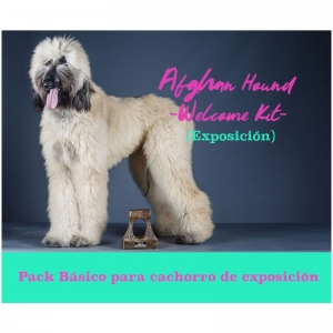 http://dogsandthecityshop.com/es/kit-especial-galgo-afgano/324-kit-cepillado-galgo-afgano.html