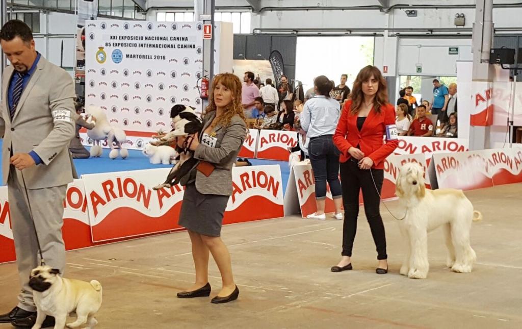 ROSA y ASIA esperando a la Final de Grupo