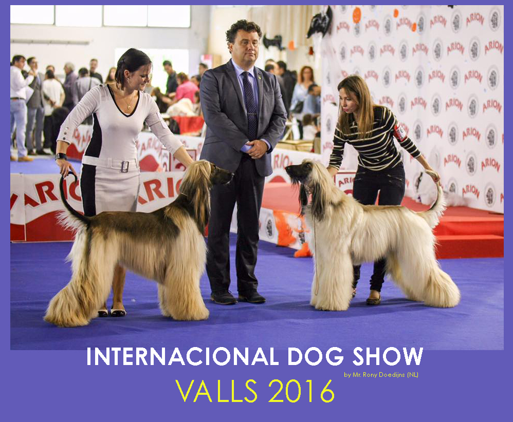 VALLS2016