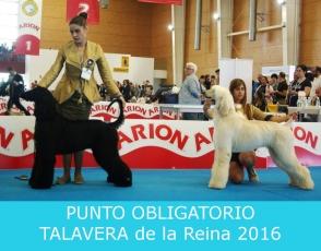 talavera2016