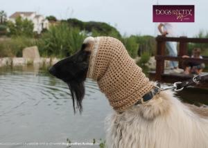 http://dogsandthecityshop.com/es/snoods-protectores-de-orejas-handmade/510-snood-jet-princess-gold-shine.html