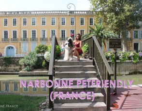 PUENTE-NARBONA COVER