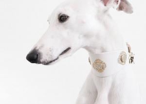 FILIGRANA CRYYSTAL Luxury Dog Collar