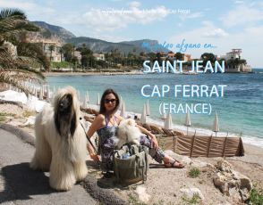 saintjeanbeachfrance