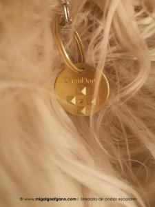 medallaondasescalares